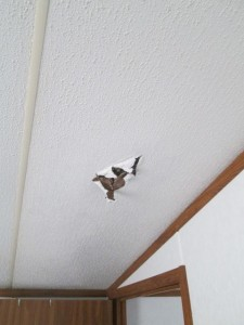 Terminology Tuesday Tricks Of The Trade Ceiling Repair Adventures In Mobile Homes